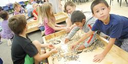 Seed table Kinder