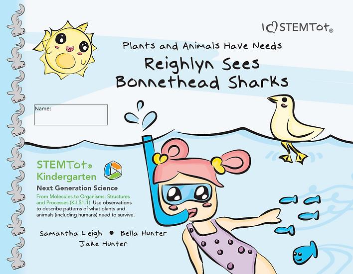 Reighlyn Sees Bonnethead Sharks
