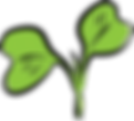 Plant sprout.png