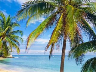 年末年始プライベートツアー in Jamaica③