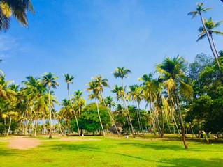 リュクスなリトリート in Kerala, INDIA②