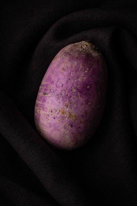 Le Radis violet sur lin, 2021