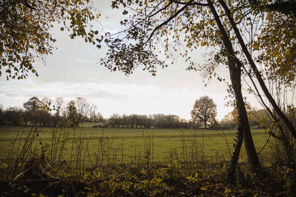Paysage rural d'Omécourt, 2020