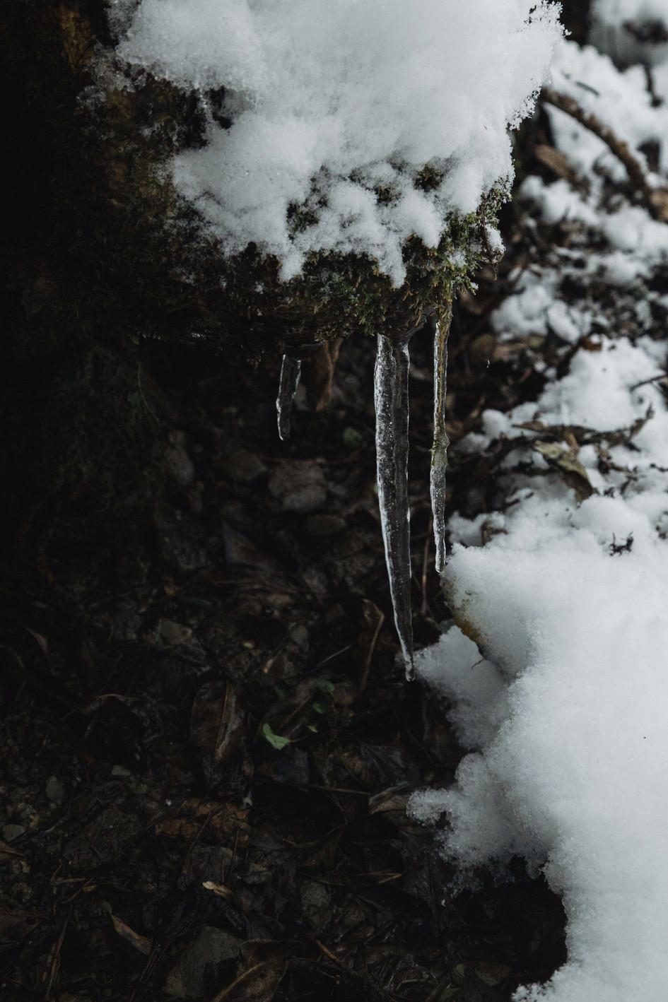 Les stalagtites d'Ens, 2017