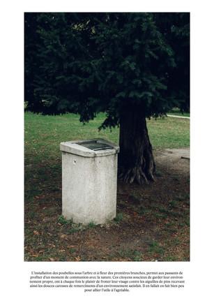 La poubelle de l'arbre