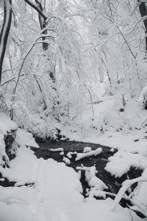 Le ruisseau de Matet en hiver, 2017
