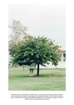 Le compteur éléctrique d'arbre