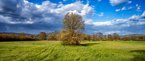 My Countryside #12