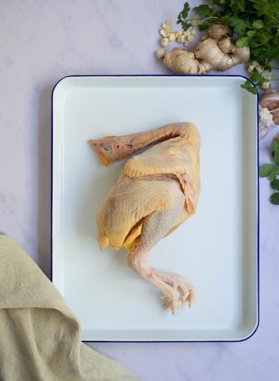 Sydney Fresh Poultry K.Vincent 2019 (12