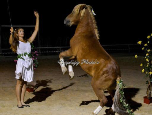 complicité cheval