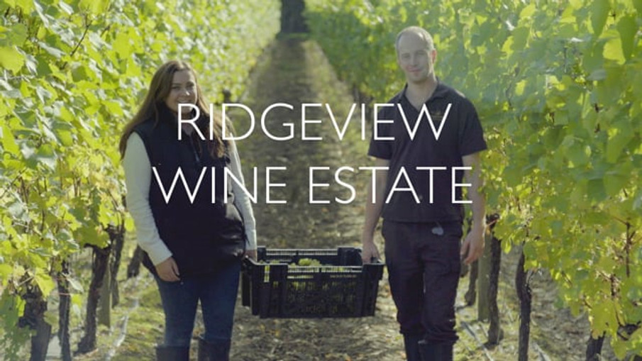 Ridgeview Wine Estate 'About us' Video