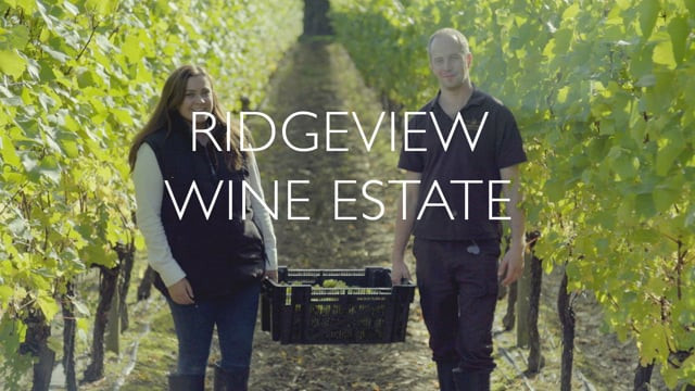 A video about Ridgeview Vineyard