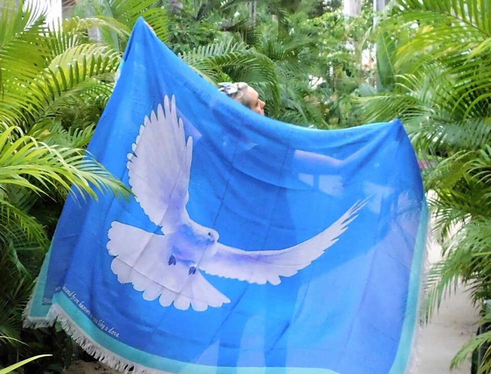 Wings Of A Dove Silk Scarf