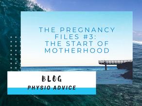 The Pregnancy Files #3: The Start of Motherhood