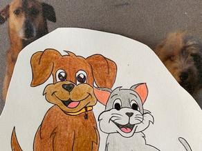 Hund und Katz - so klappt's!