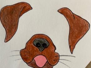 Warum haben Hunde Schlitze in der Nase?