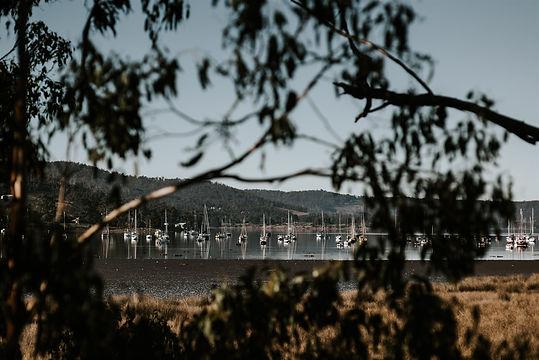 Port_Cygnet_Cannery_©_www.damienmilan.co