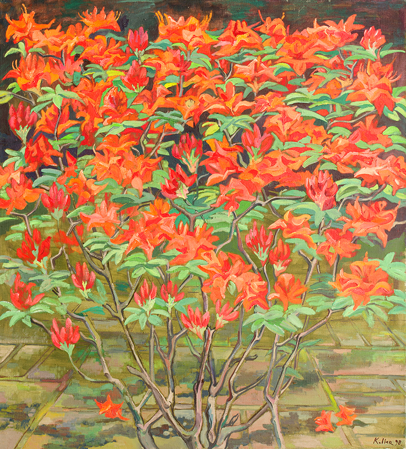 Doris' Garten 3.jpg