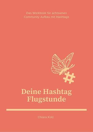Hashtags Flugstunde (3).jpg