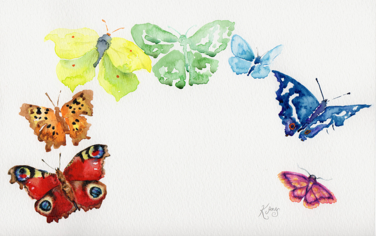 Katy Jones, 'Lepidopterist's Rainbow.'   Framed Size: 34cm x 43cm. £235