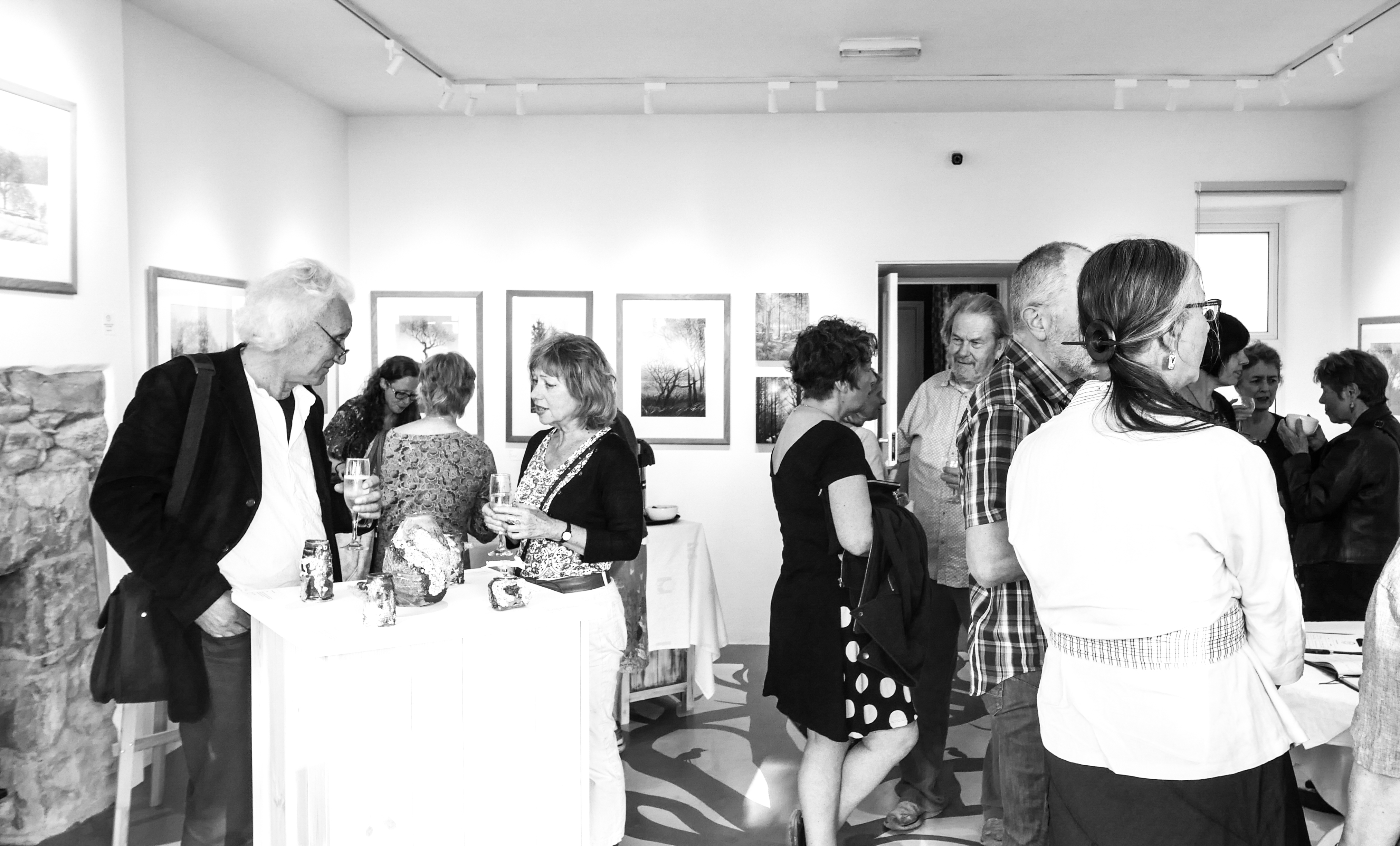 Valerie Land & Terrence Bunce Exhibition launch