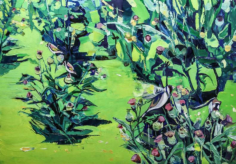 Goldfinches feeding / Llinos Aur yn bwydo