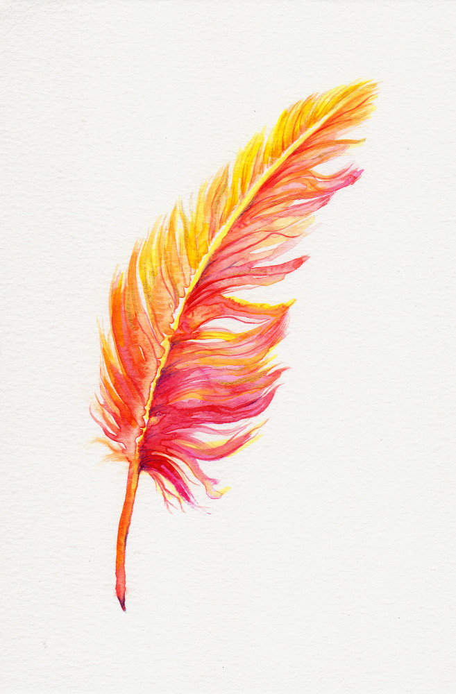 Katy Jones, 'Phoenix Feather I.' Framed Size: 30cm x 35cm. £164