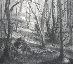 The White Heart - Etching - Flora McLachlan - SOLD