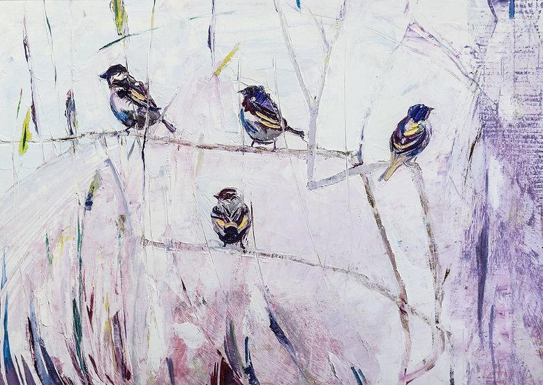 Tree Sparrow / Golfan y mynydd