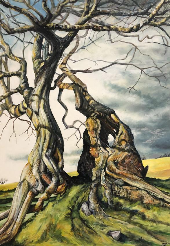 Crabapple and Hawthorn By Shàn Ellis