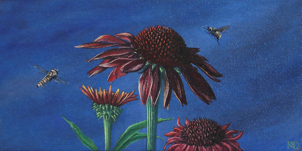 Garden life with Echinacea