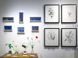 The Garden Project / Prosiect yr Ardd Exhibition