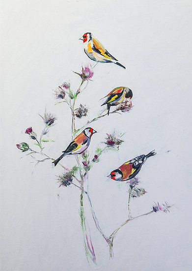 Goldfinches amongst the Thistles