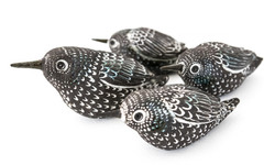 Jane Williams - Branwen's Starling - SOLD OUT