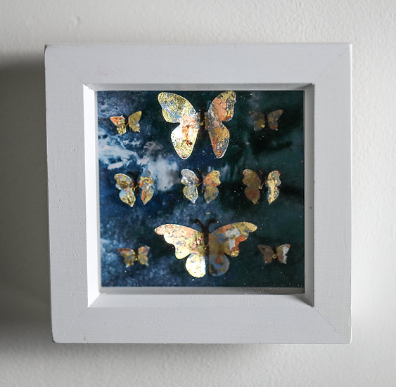Butterfly Collection - Small