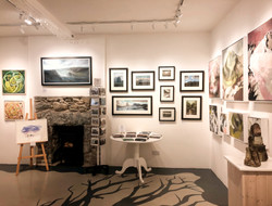 The Nature of Snowdonia and Hope: The Creative Response