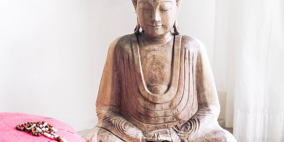 Meditation & Book Signing