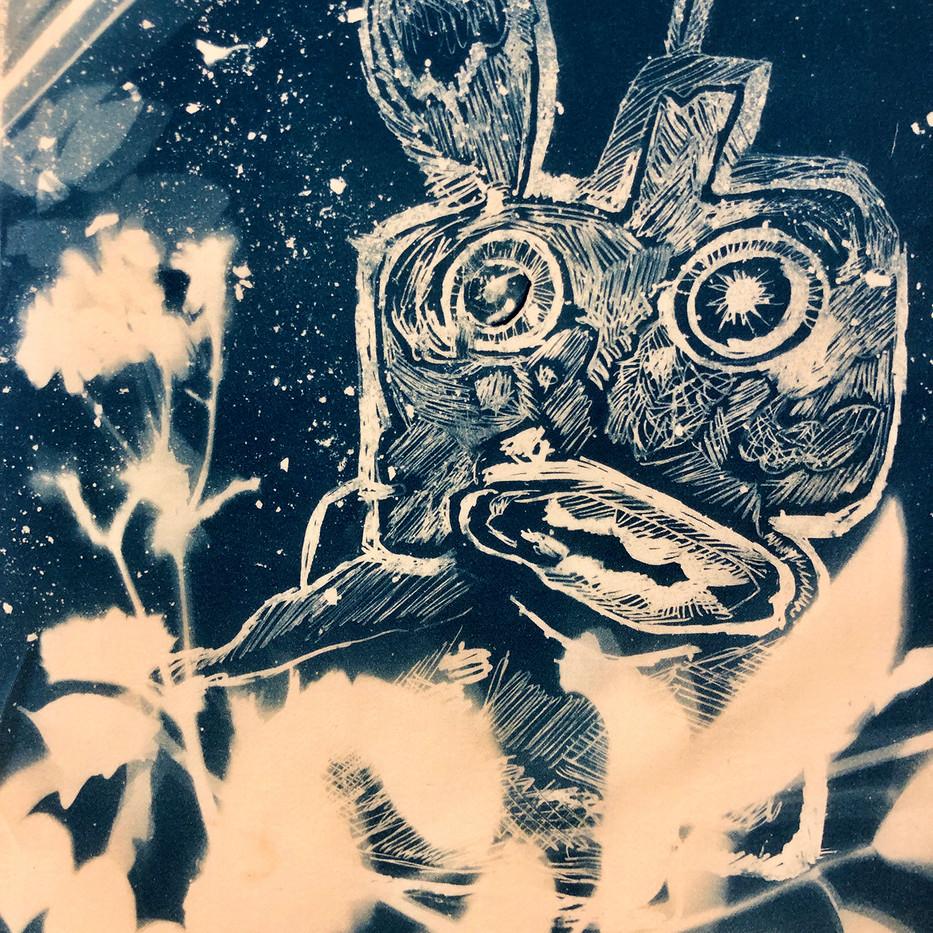 cyanotype drawing