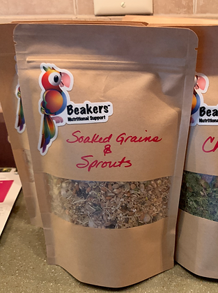 Sprouts & Soaked Grains