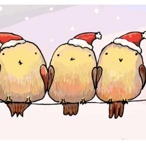 Ho, Ho, HUH?