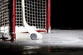 Palet de hockey et bâton