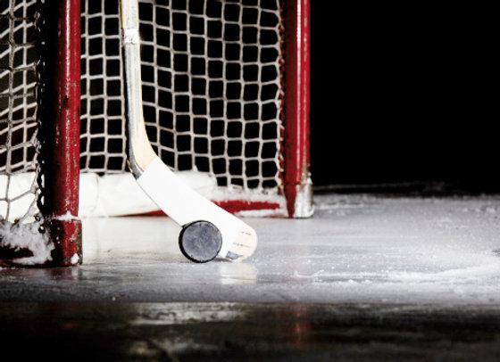 Hockey off-season programming