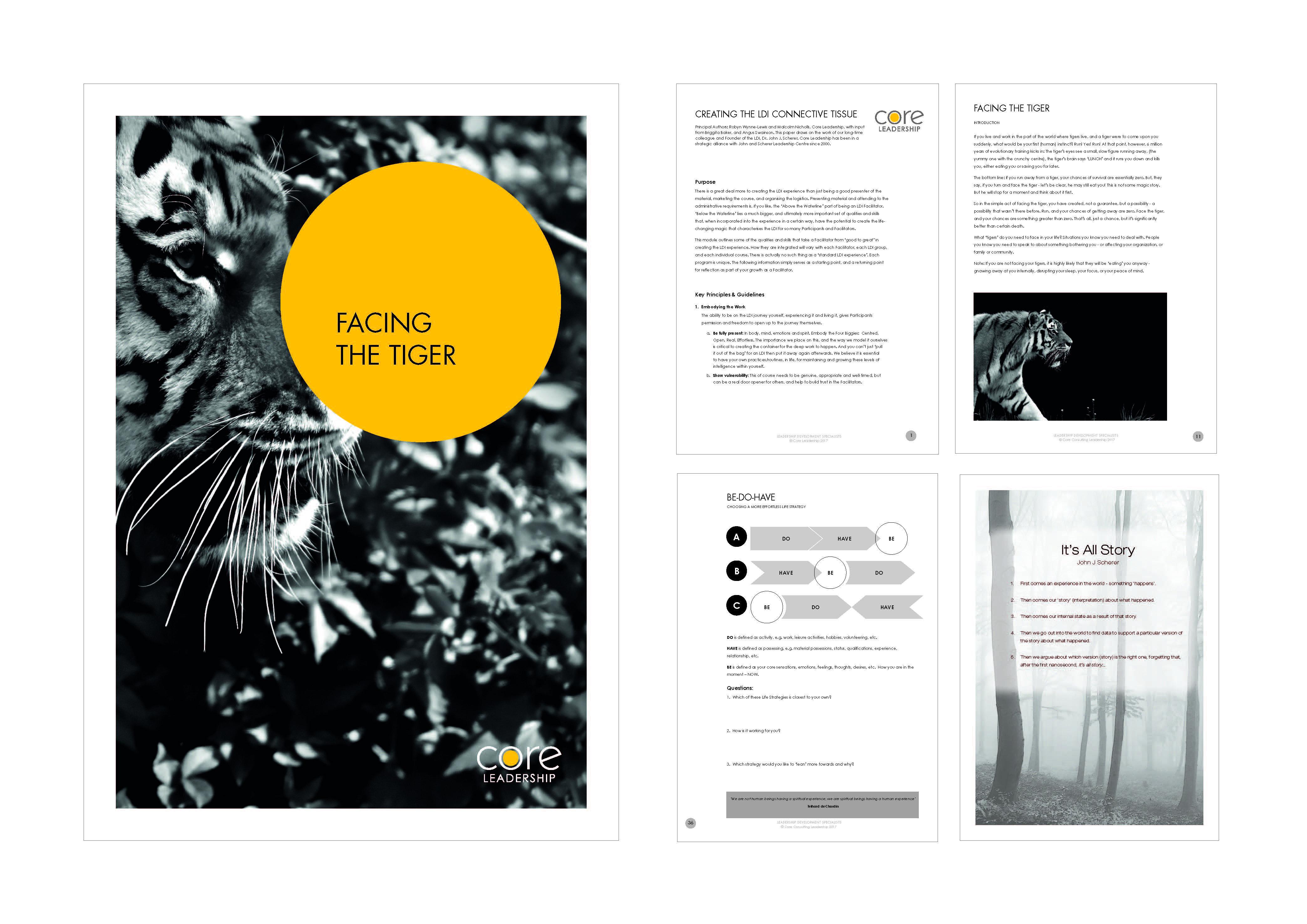 SFM-Portfolio 2018_Page_06