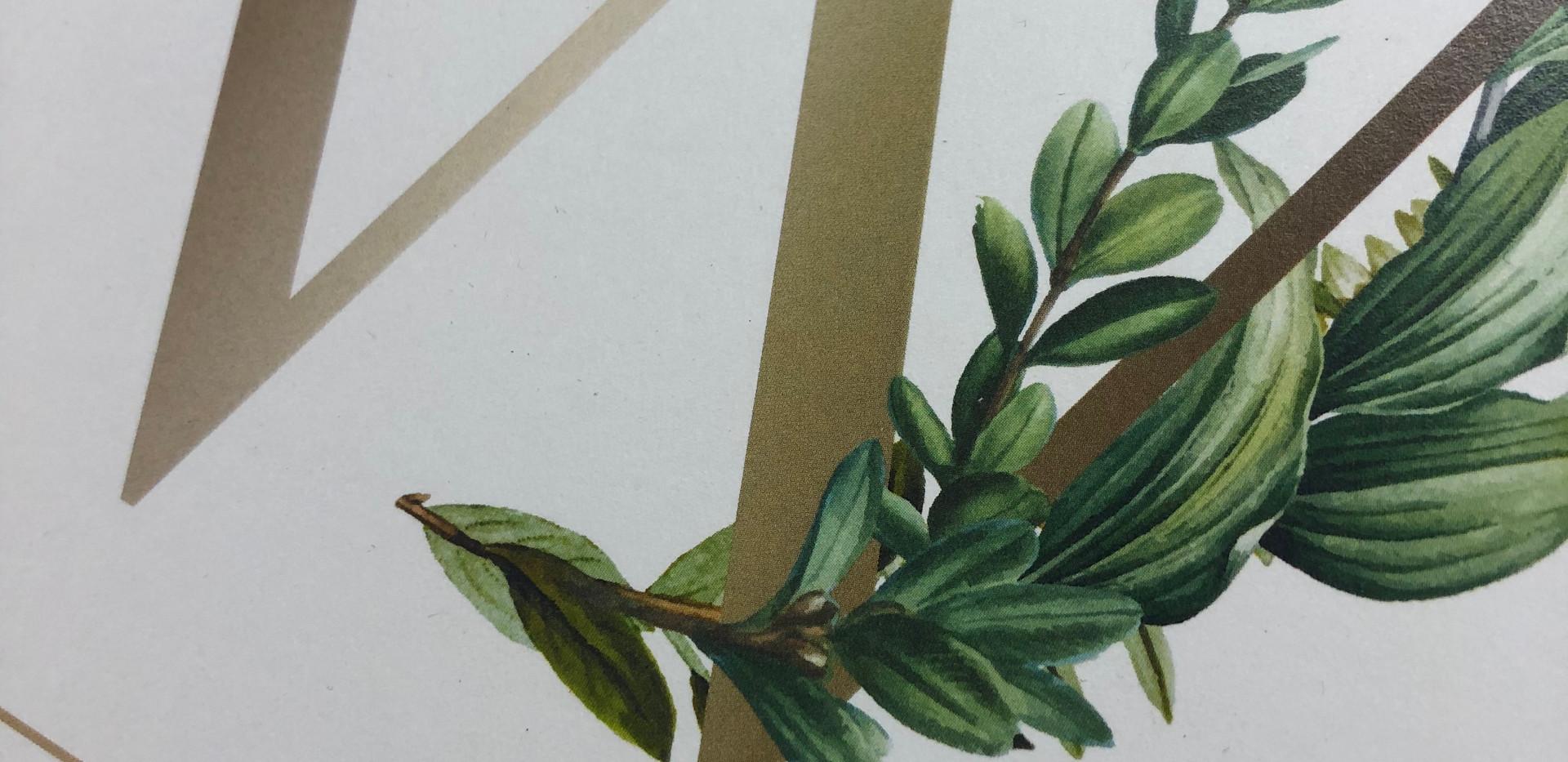 Name Print - Botanical Detail