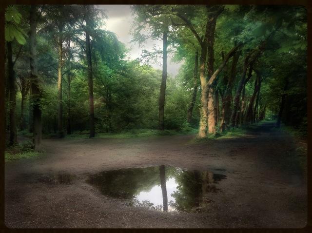 Écho-Bois de Boulogne