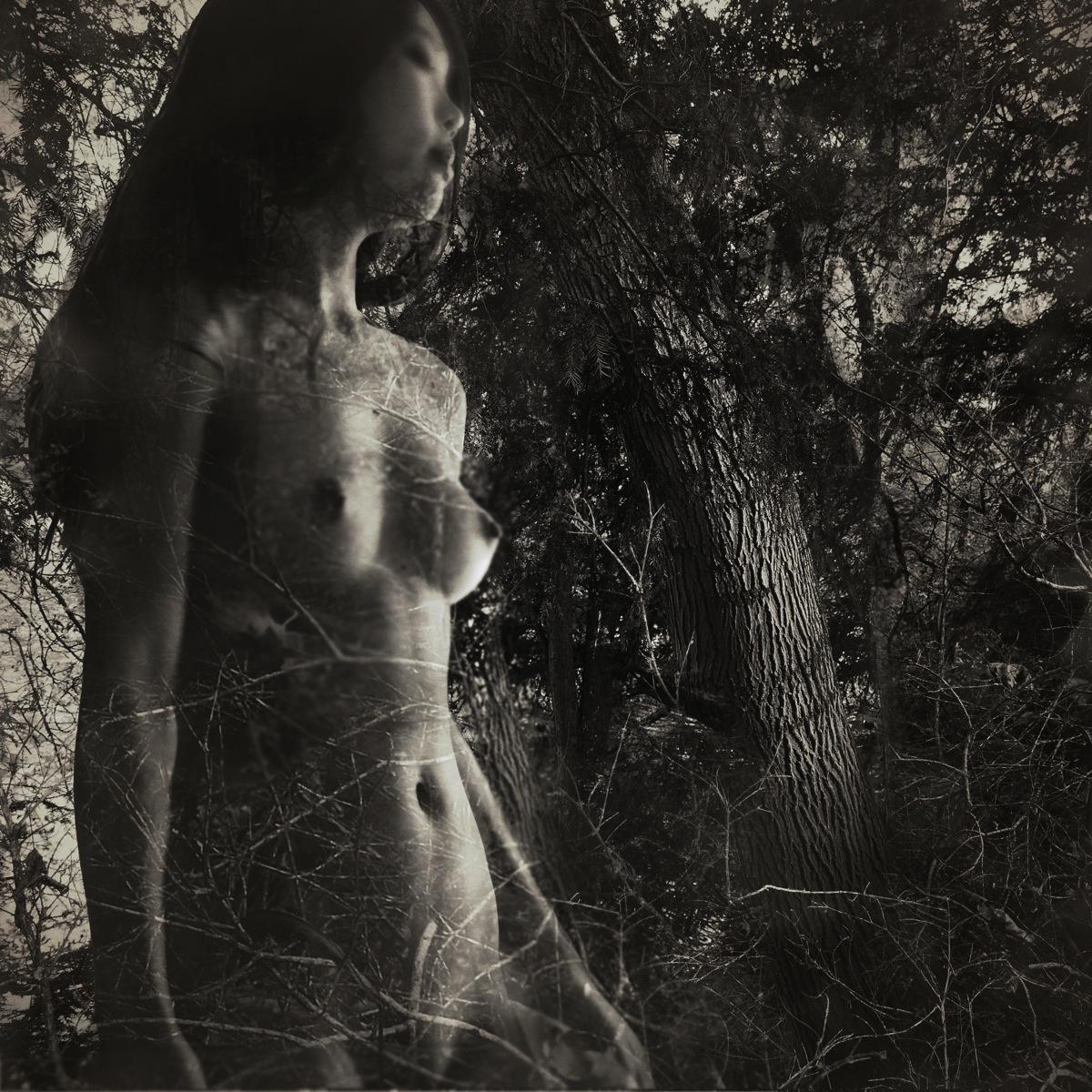 Pénétration des mondes- Femme forêt