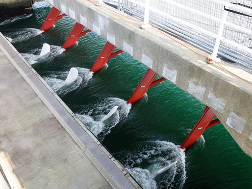 Riding the wave of tidal power