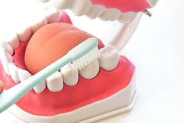 歯ブラシ さかやなぎ歯科医院