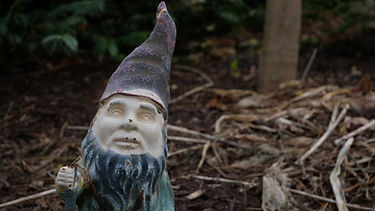Banner Photo of a Gnome