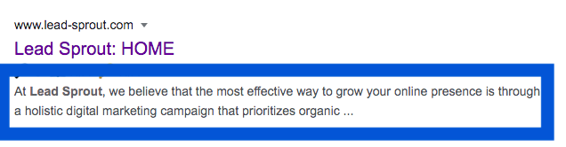 "Example of a Description tag from Lead-Sprout's homepage. The pictures says ""At Lead Sprout, we believe that the most effective way to grow your online presence is through a holistic digital marketing campaign that prioritizes organic ..."""
